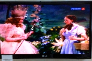 Fuzzy, but everyone knows it's Dorothy and the Good Witch