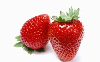 Strawberry_photos_Fresh_Strawberry_Picture_F045020